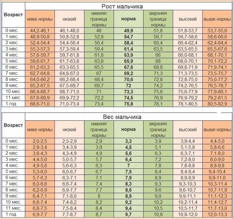 Соответствие роста и веса для мальчика до 1 года