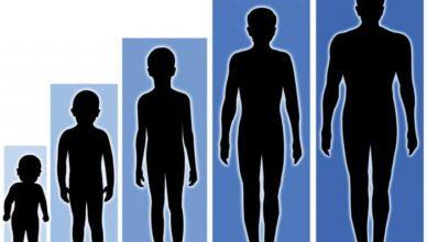 Таблица соответствия роста, веса и возраста у детей