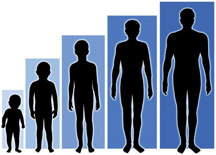 Рост детей по возрасту таблица мальчики